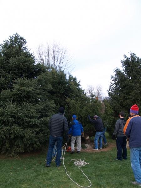 2014-12-19 CLC Christmas Tree_PC199759