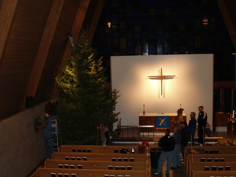 2015-12-18 CLC Xmas tree felling_standingPC181189