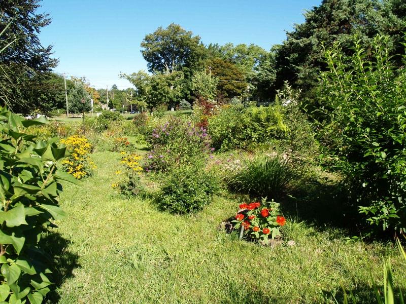 CLC082413 Garden of Mertz _P8247500