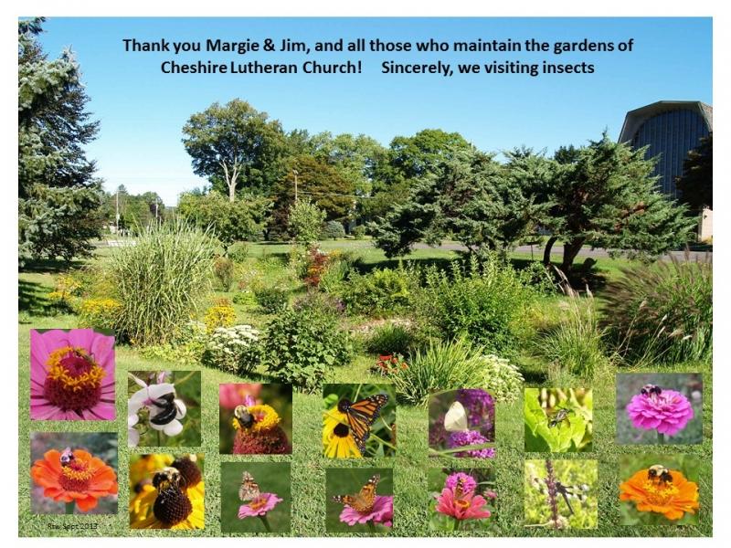Garden of Mertz thank you