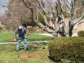 2015-04-18 CLC spring cleanup_P4180440